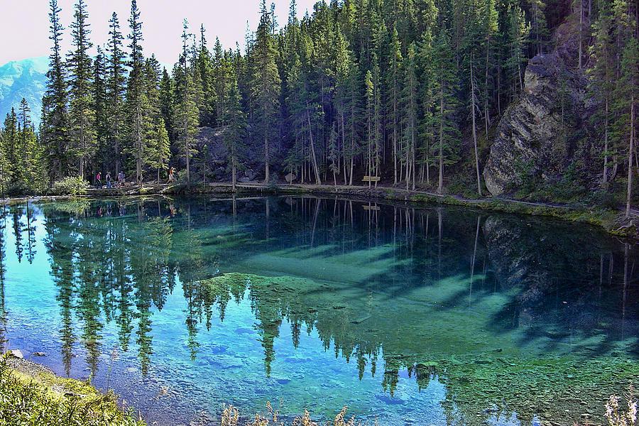 Alberta Photograph - Emerald Mountain Pond by Jo-Anne Gazo-McKim