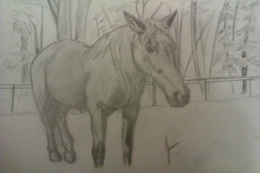 Emma Drawing by Jamie Mah