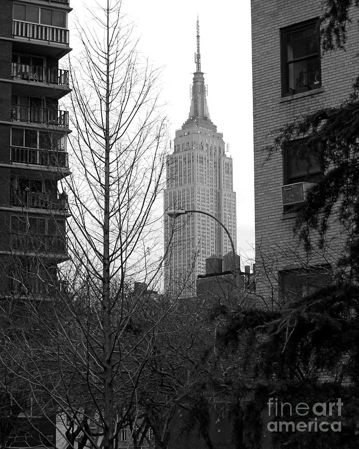 Empire State Building Photograph - Empire State Building by Mark Gilman