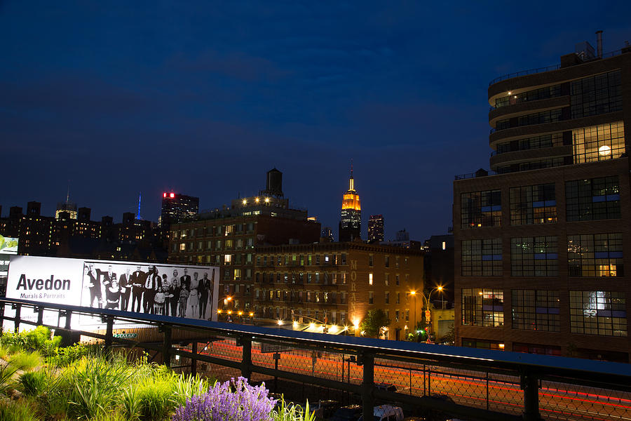 Empire State Building Photograph - Empire State From High Line by John Dryzga