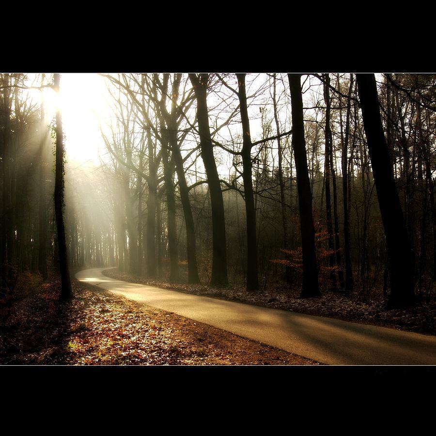 Empty Road Photograph by Bob Van Den Berg Photography