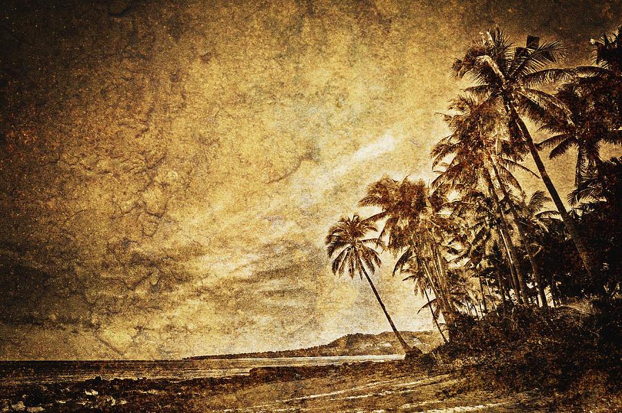Brown Photograph - Empty Tropical Beach 3 by Skip Nall