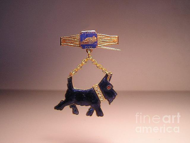 Dogs Jewelry - Enamels 34a by Dwight Goss