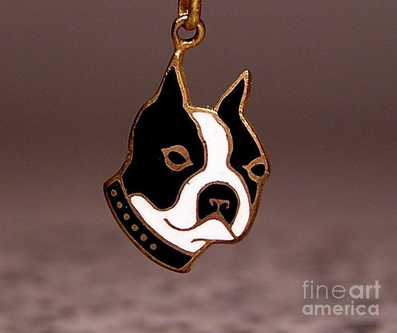 Boston Terrier Jewelry - Enamels 48c by Dwight Goss
