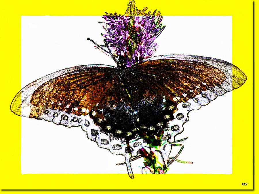 Nature Mixed Media - Enchanted Wings Card by Debra     Vatalaro