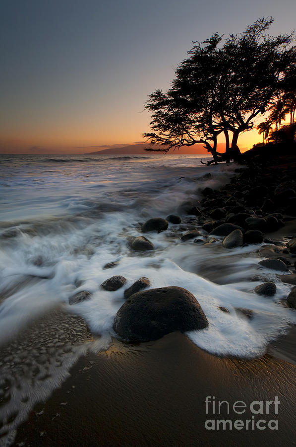 Lahaina Photograph - Encompassed by Mike  Dawson