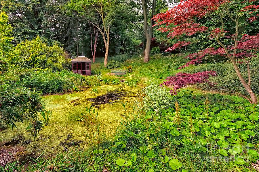 Countryside Photograph - English Garden  by Adrian Evans