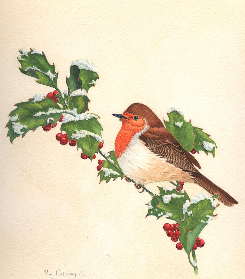 Bird Painting - English Robin by Bill Gehring