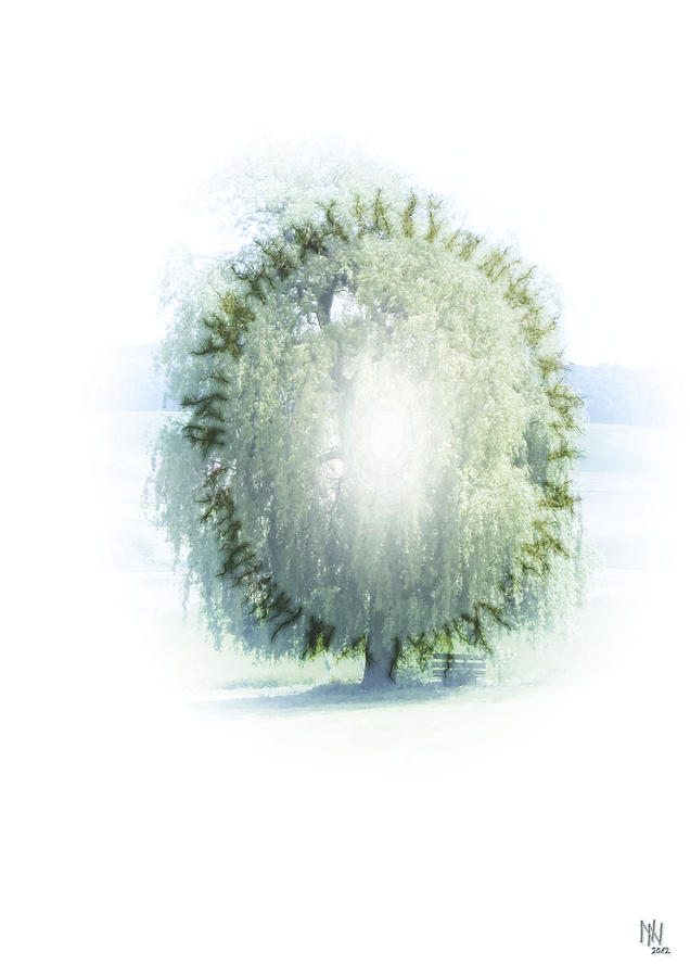 Enlightenment Digital Art - Enlightment Of The Willow by Nafets Nuarb