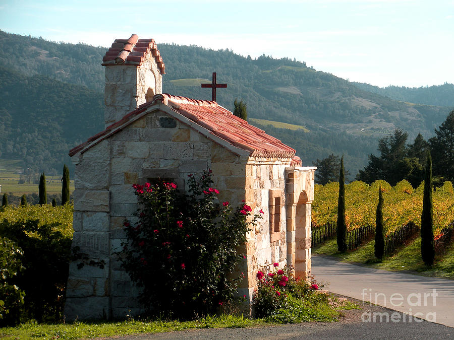 St.helena Photograph - Entrance To Amorosa by Gail Salituri