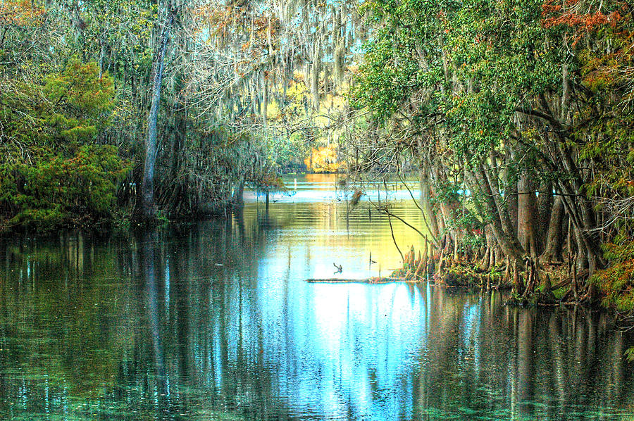Spring Photograph - Entrance To Swanee by Ronald T Williams