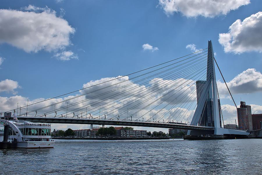 Erasmus Bridge Photograph - Erasmusbrug by Steven Richman