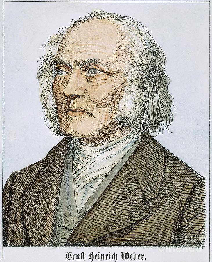 19th Century Photograph - Ernst Heinrich Weber by Granger