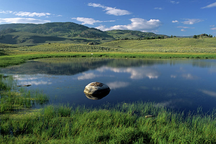 Horizontal Photograph - Erratic Boulder And Small Pond In Lamar Valley by Altrendo Nature