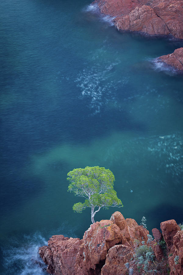 Vertical Photograph - Esterel Mountains by LP photographie