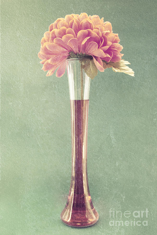 Still Life Photograph - Estillo Vase - S01t04 by Variance Collections