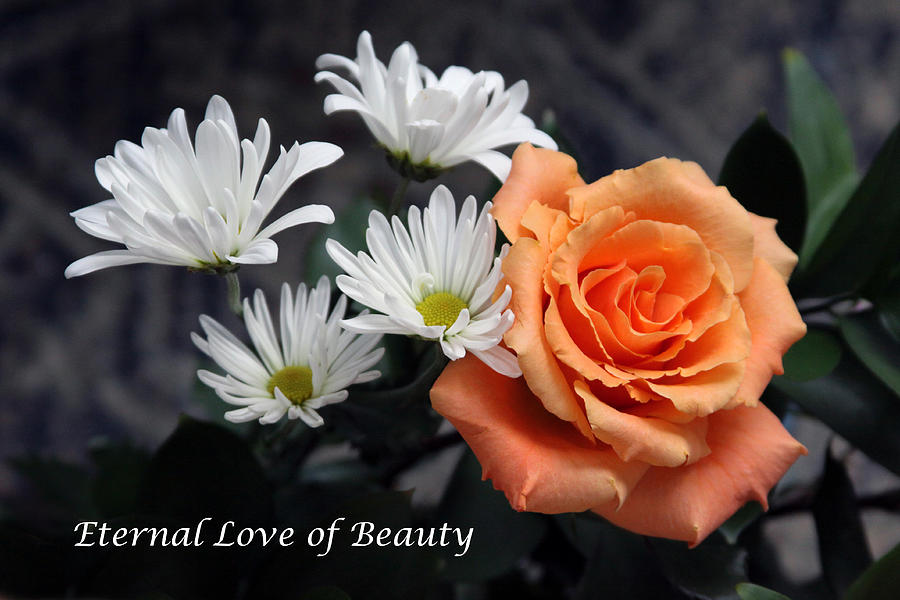 Flowers Photograph - Eternal Love of Beauty by John Lautermilch