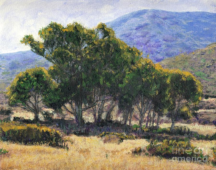 California Painting - Eucalyptus Grove Catalina  by Randy Sprout