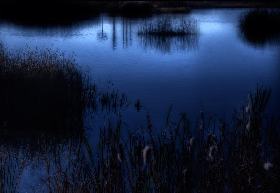 Marsh Photograph - Evening At The Duck Pond by Utah Images