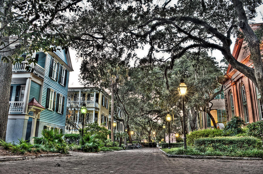 Charleston Photograph - Evening Campus Stroll by Andrew Crispi