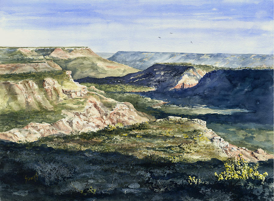 Canyon Painting - Evening Flight Over Palo Duro Canyon by Sam Sidders