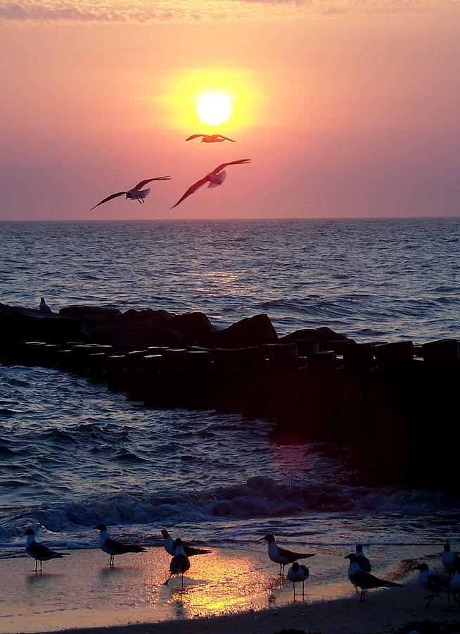 Seascape Photograph - Evening Light Show by Glenn McCurdy