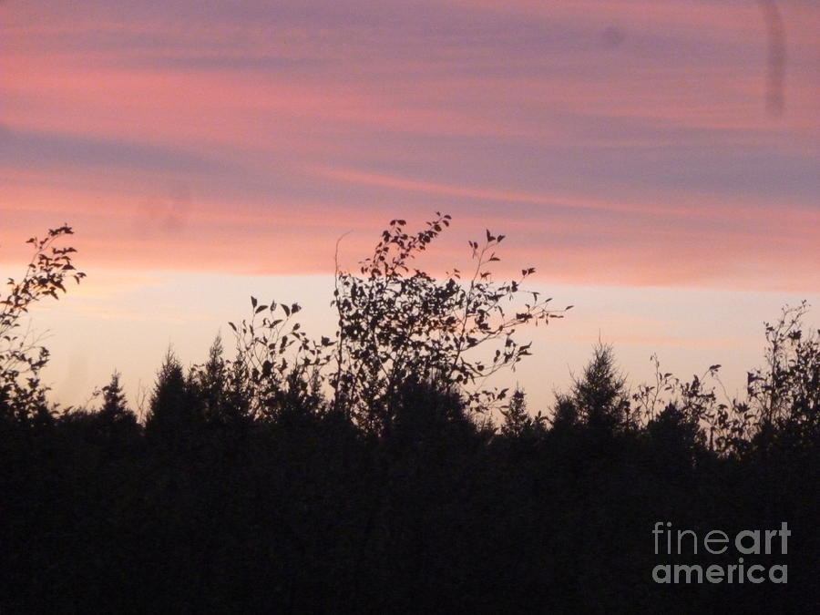 Sky Photograph - Evening Sky In Country by Art Studio