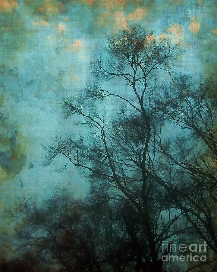Aqua Photograph - Evening Sky by Judi Bagwell