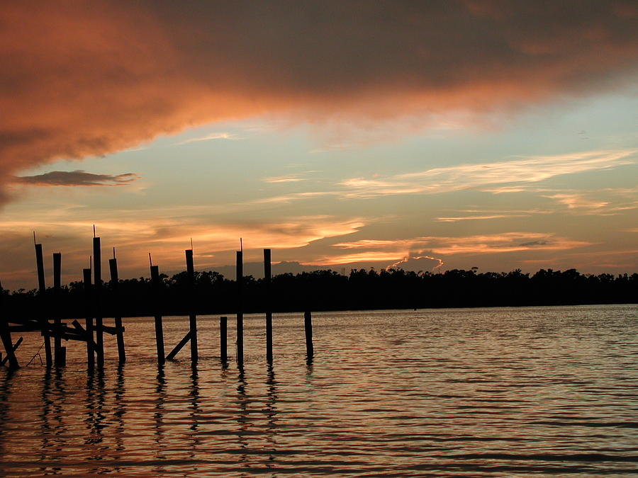 Photo Photograph - Everglades Sunset by Nancy Taylor