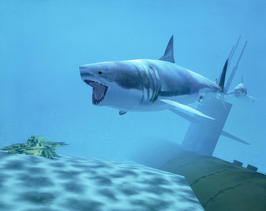 Graphics Photograph - Example Of Reality Centre Graphics, Shark by David Parker