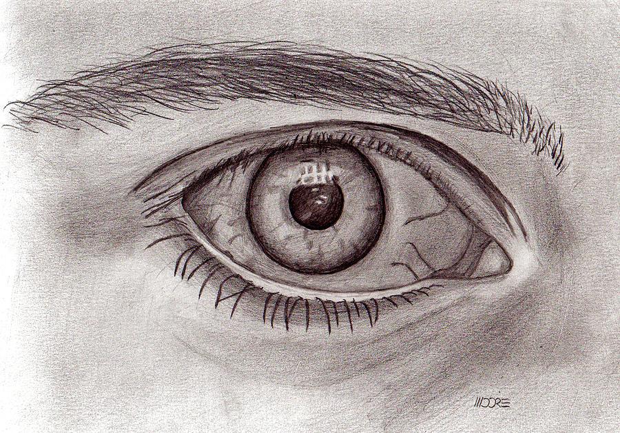 Sketch Eye Drawing - Eye by Pat Moore