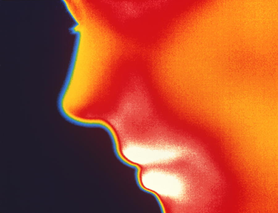 Profile Photograph - Face Thermogram by Tony Mcconnell