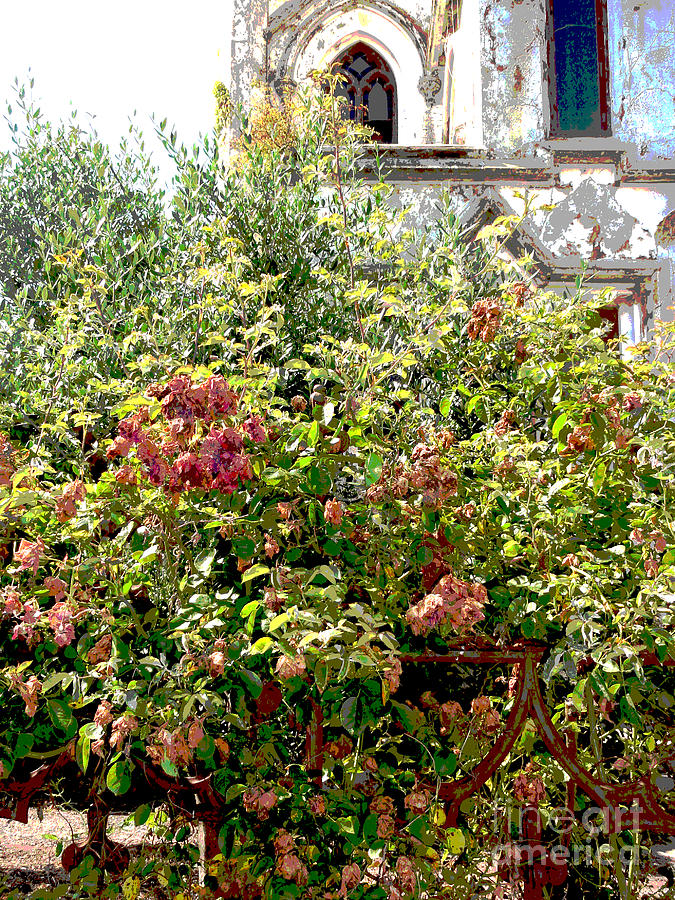 Church Photograph - Faded Flowers by David Peters