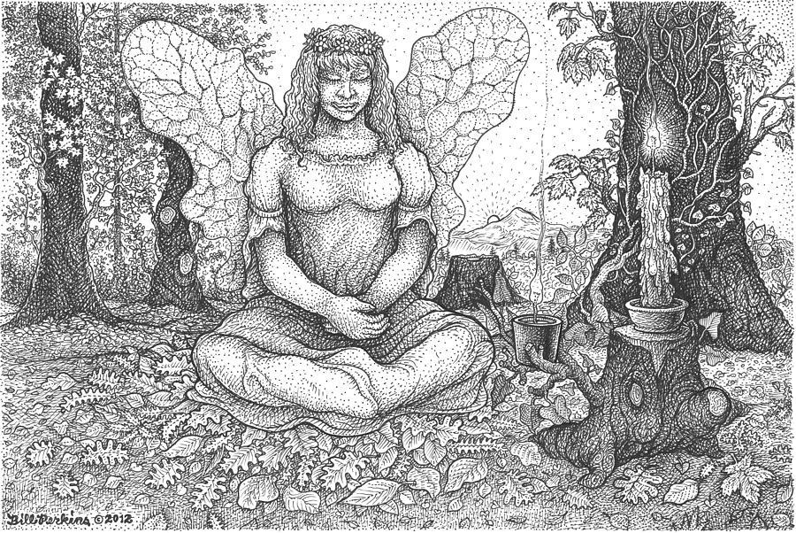 Fairy Meditation by Bill Perkins
