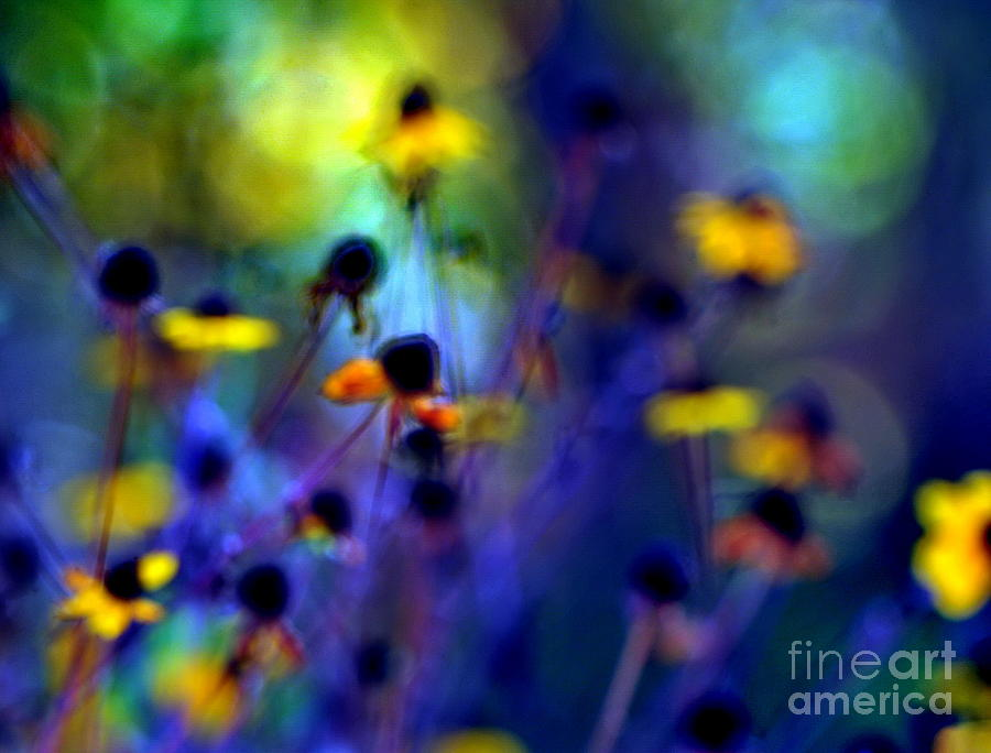 Fall Photograph - Fairyland Painting by Andrea Kollo