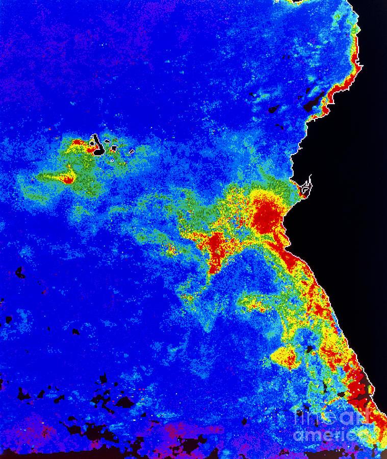 Phytoplankton Photograph - Fal-col Satellite Image Of Coastal by Dr. Gene Feldman, NASA Goddard Space Flight Center