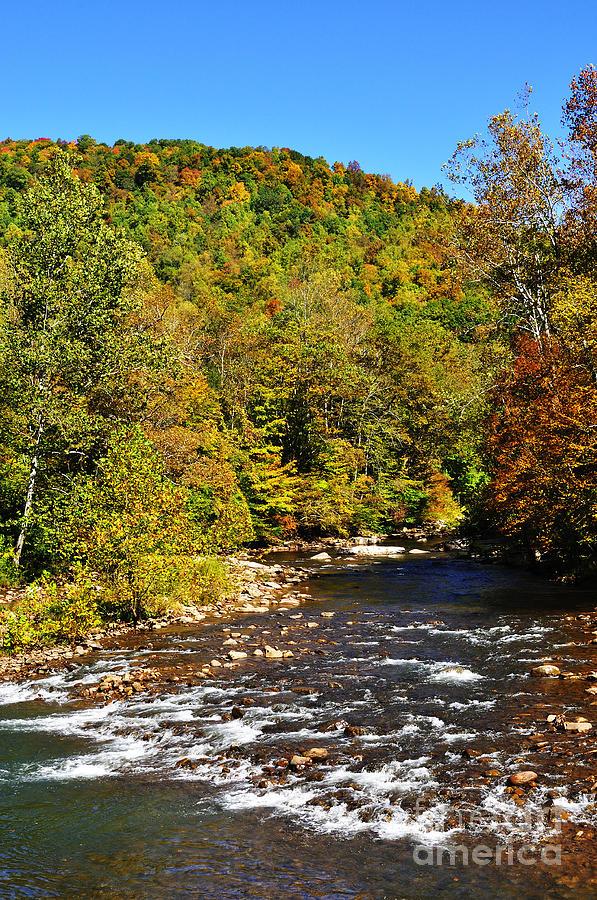 Elk River Photograph - Fall Along Elk River by Thomas R Fletcher