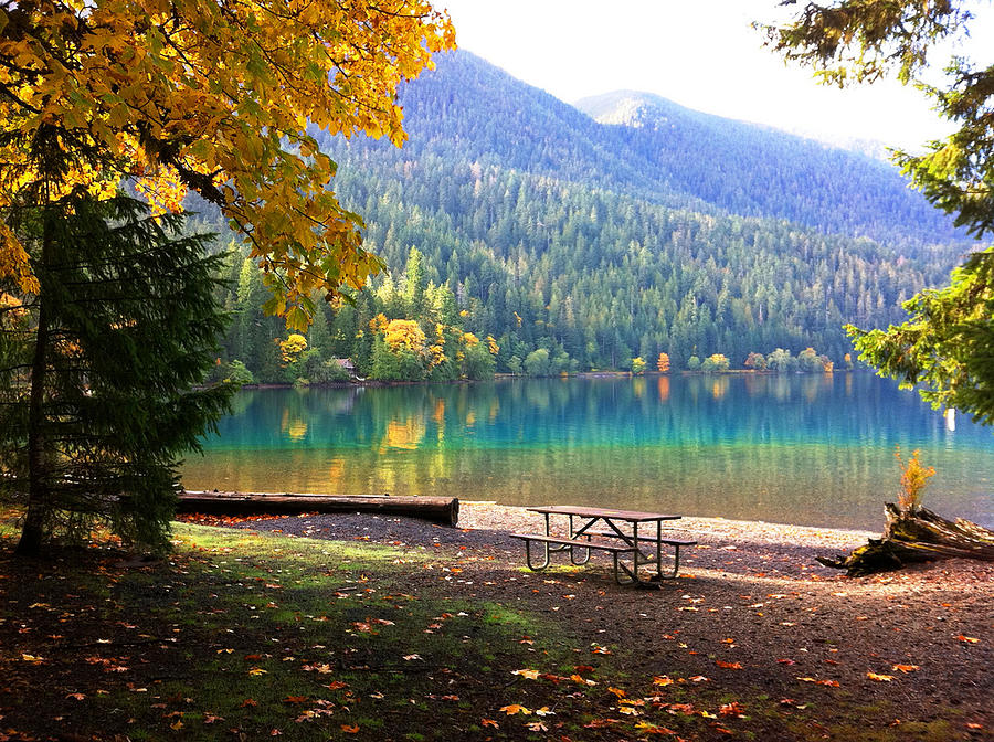 Fall at Lake Crescent by Kelly Manning