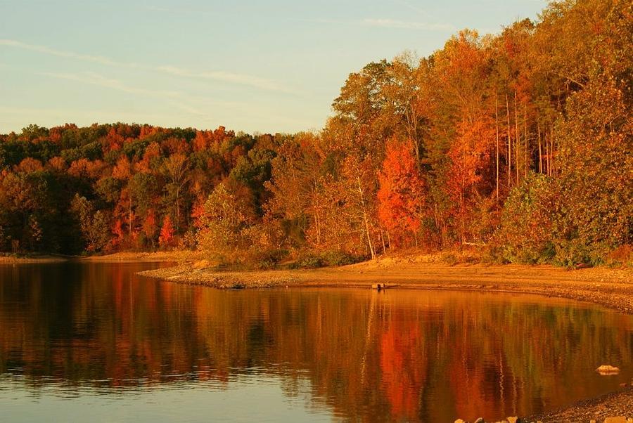 Patoka Lake Photograph - Fall At Patoka by Brandi Allbright