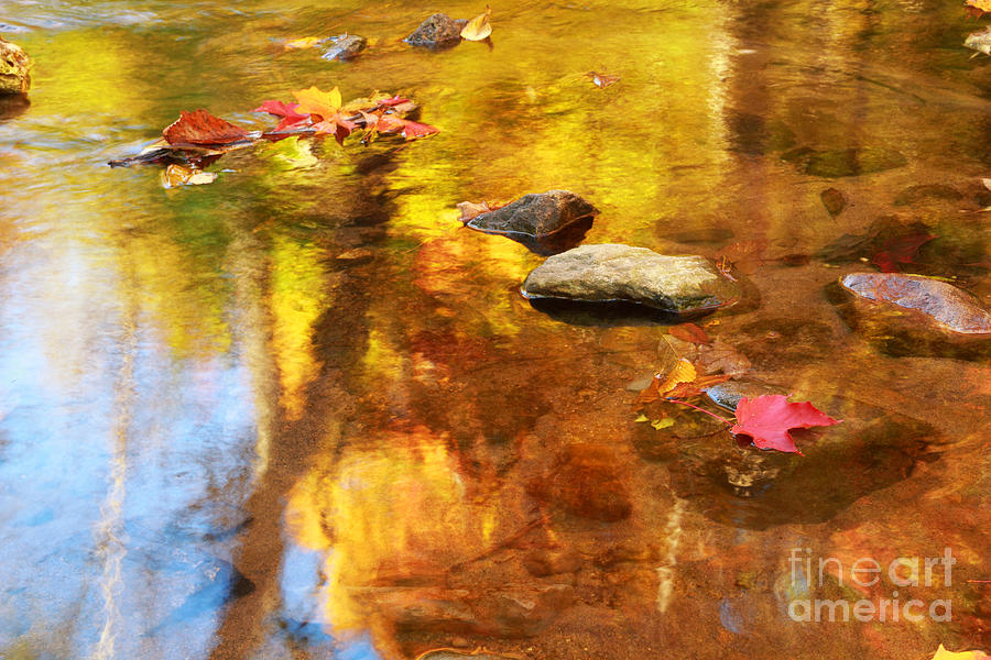 Autumn Photograph - Fall Color In Stream by Charline Xia