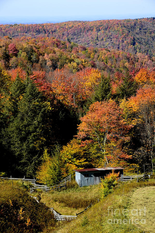 Fall Color Photograph - Fall Color West Virginia by Thomas R Fletcher