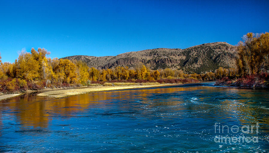 Idaho Photograph - Fall Colors On The Snake River by Robert Bales