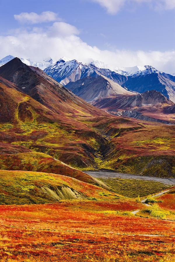 Autumn Photograph - Fall Colours And Alaska Range, Denali by Yves Marcoux