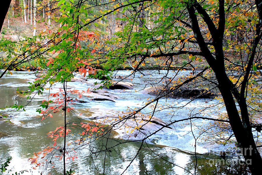White Water Photograph - Fall Day  by Ar S