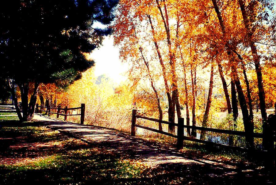 Artist Photograph - Fall Day by David Alvarez