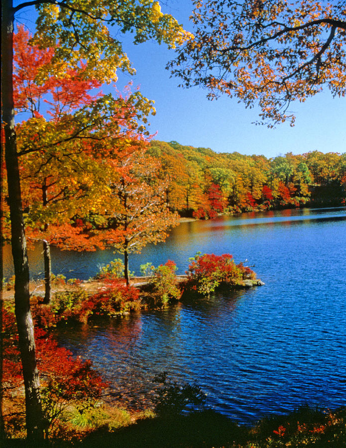 Fall Foliage In Harriman State Park Photograph By Carolyn