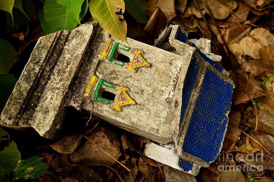 Buddha Photograph - Fall From Grace II by Dean Harte