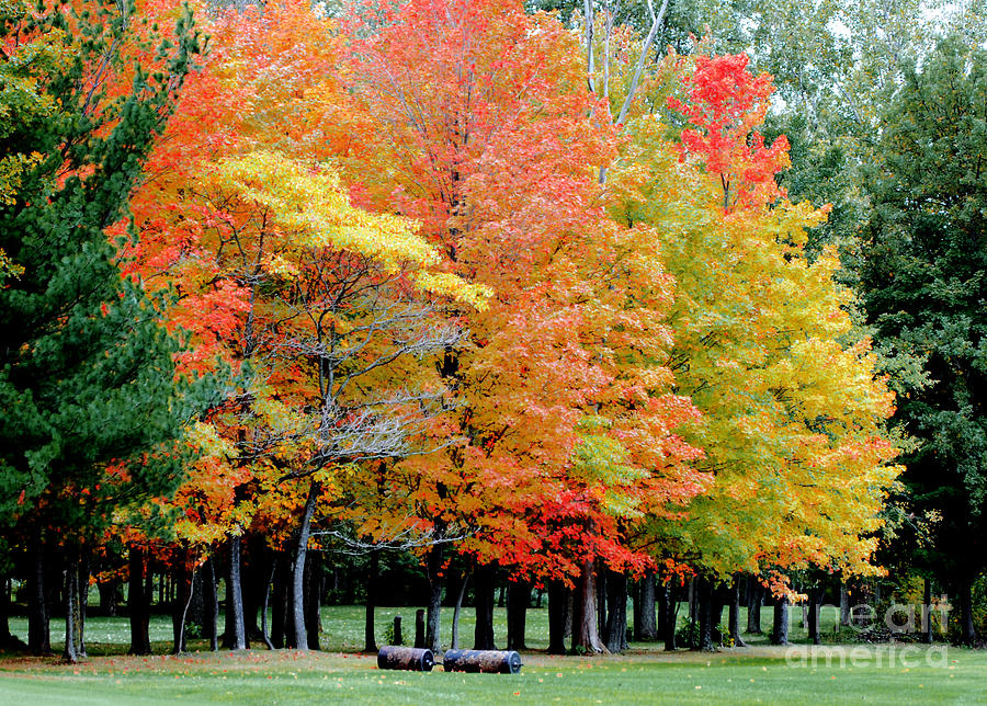 Autumn Colors Photograph - Fall In Michigan by Optical Playground By MP Ray