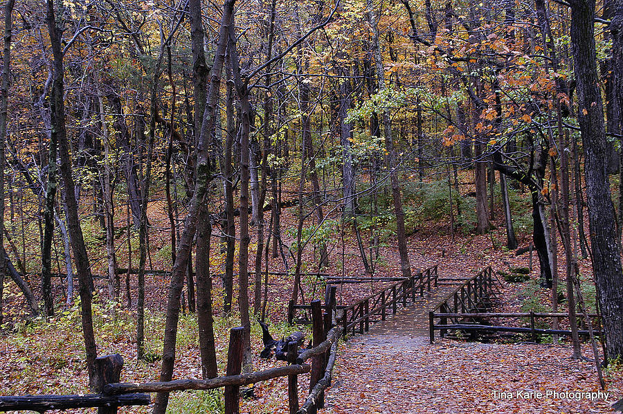 Fall In Yellowsprings Photograph by Tina Karle