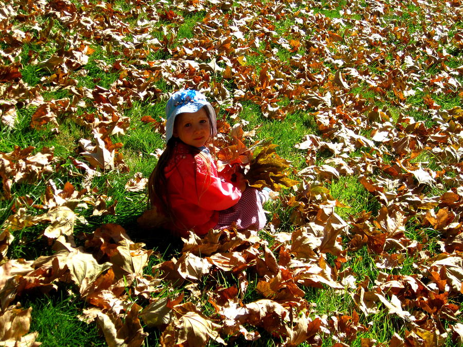 California Photograph - Fall Is Fun by Catherine Natalia  Roche